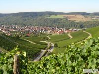 PanoramaWeinbergeThngersheim