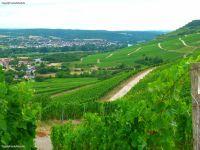thuengersheim001